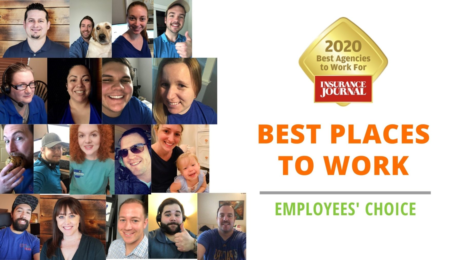 best place to work, best agency, employees choice, insurance journal